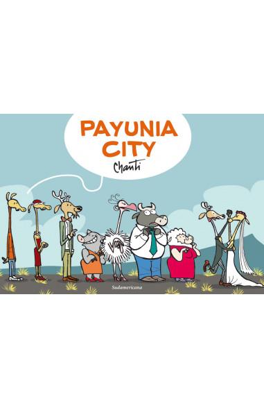 Payunia city