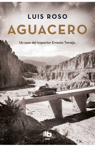 Aguacero (Inspector Trevejo 1)