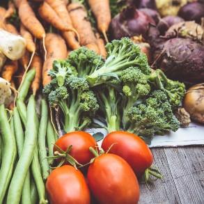 Nutrición, belleza y fitness