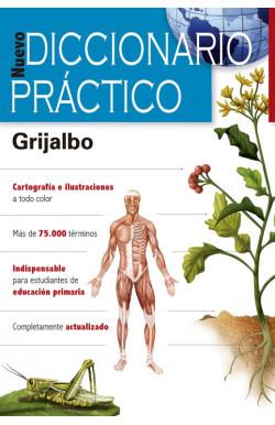Diccionario Practico 2018