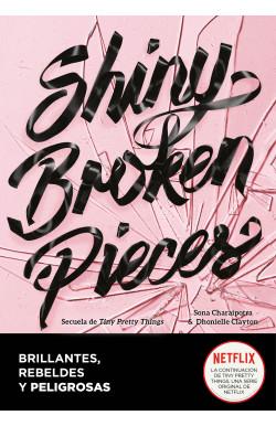 Shiny Broken Pieces...